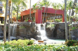 Soothing waterfall at the Radisson Aruba