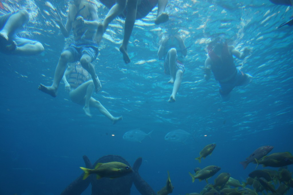 Snorklers braving the shark aquarium at Atlantis