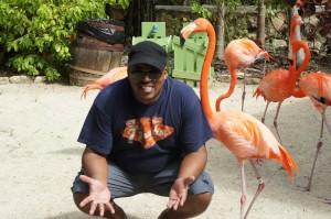 Mango Eddie getting chummy with flamingo at Ardastra Gardens in Nassau, Bahams