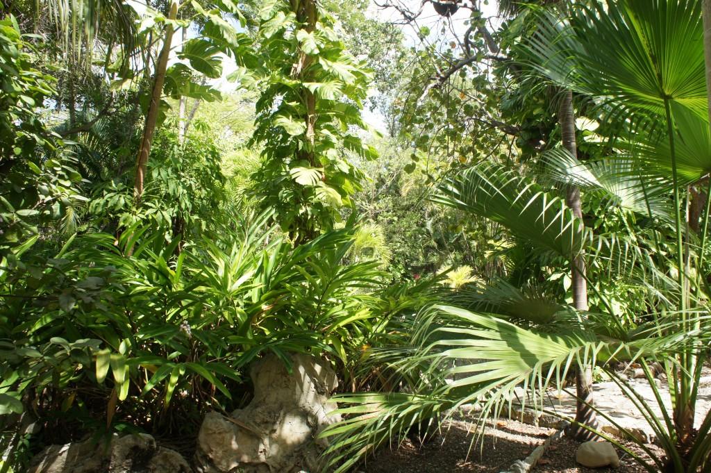 Ardastra Garden & Zoo in Nassau, Bahamas