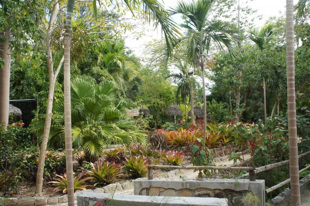 Ardastra Gardens in Nassau, Bahamas