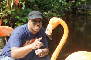 Hanging with Flamingos at Ardastra Gardens & Zoo in Nassau, Bahamas