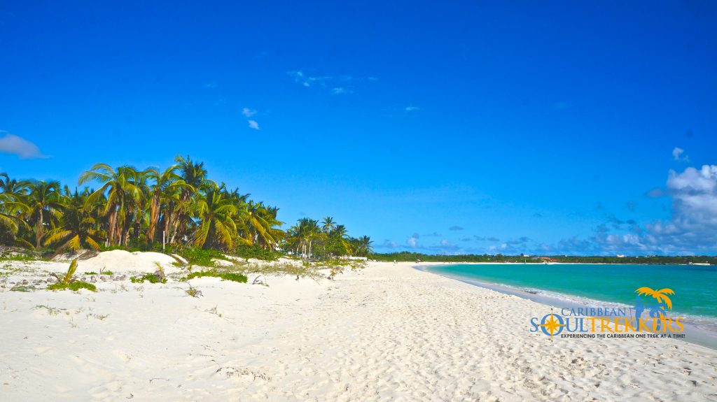 Soft, white sand underfoot, shimmering blue water and a grove of palm trees in the distance make this the perfect place for a romantic stroll.